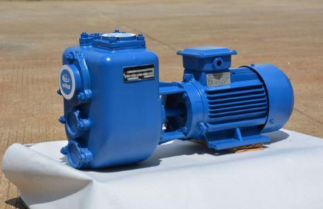 BYQLZW排污能力强自吸排污泵-图片