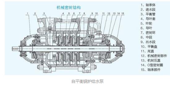 自平衡锅炉给水泵图3