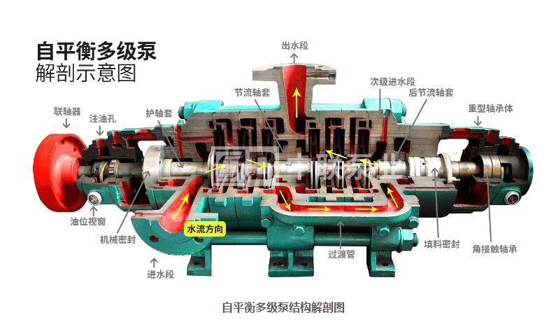 图2 叶轮对称排列的多级离心泵