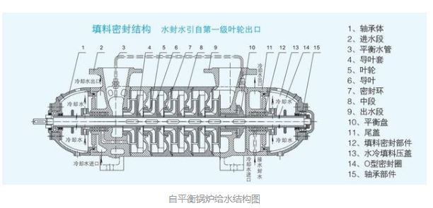锅炉给水泵结构图片